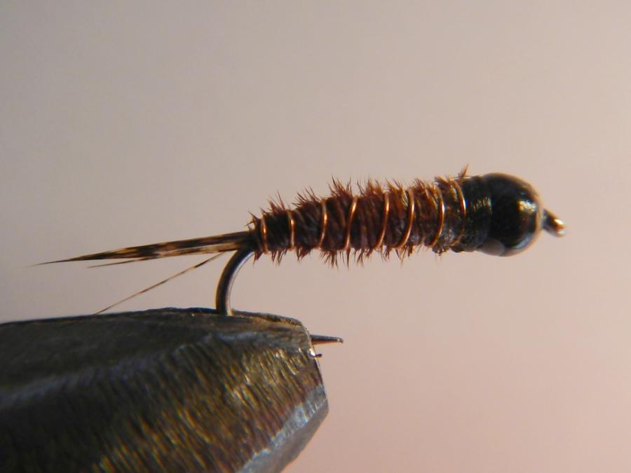 Nymphe Pheasant tail